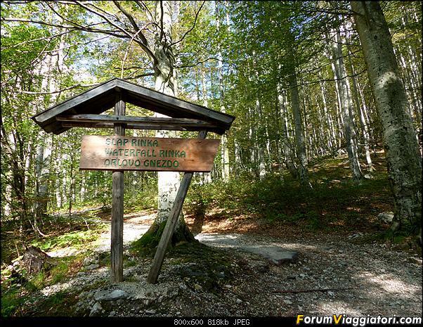 Slovenia, polmone verde d'Europa-p1830303.jpg