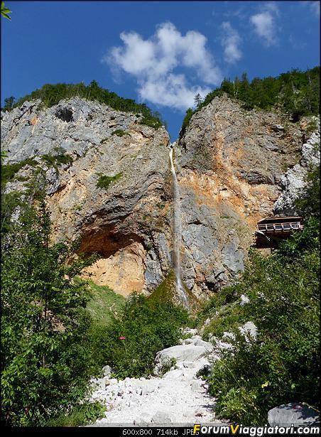 Slovenia, polmone verde d'Europa-p1830355.jpg