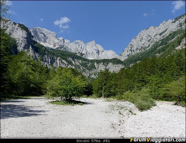 Slovenia, polmone verde d'Europa-p1830364.jpg