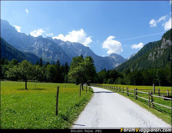 Slovenia, polmone verde d'Europa-p1830370.jpg