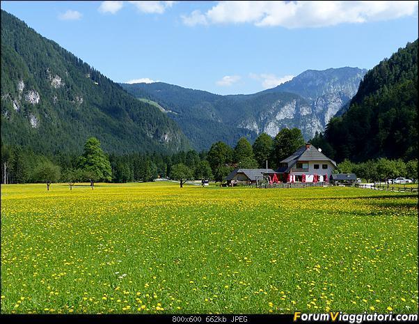 Slovenia, polmone verde d'Europa-p1830377.jpg