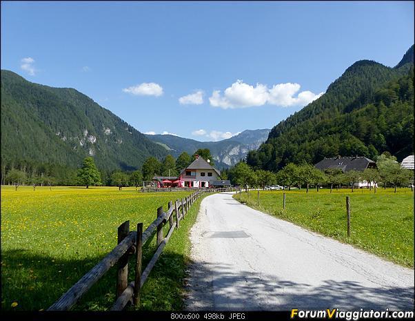 Slovenia, polmone verde d'Europa-p1830386.jpg