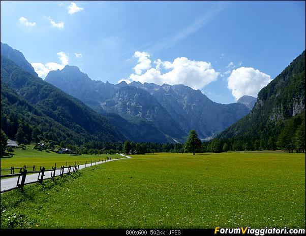 Slovenia, polmone verde d'Europa-p1830414.jpg