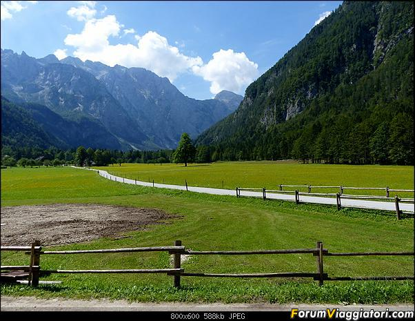 Slovenia, polmone verde d'Europa-p1830419.jpg