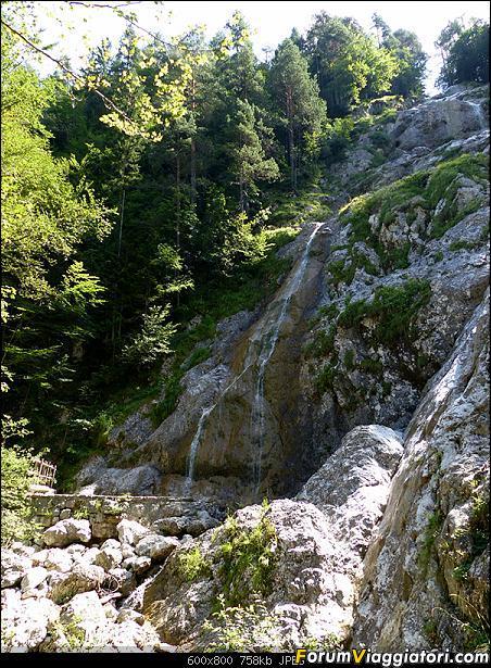 Slovenia, polmone verde d'Europa-p1830445.jpg