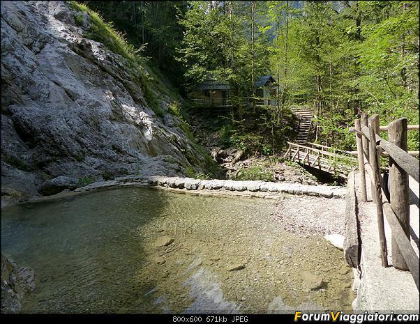 Slovenia, polmone verde d'Europa-p1830435.jpg