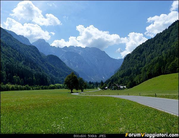 Slovenia, polmone verde d'Europa-p1830473.jpg