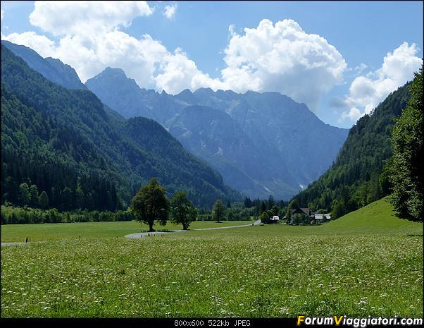 Slovenia, polmone verde d'Europa-p1830480.jpg