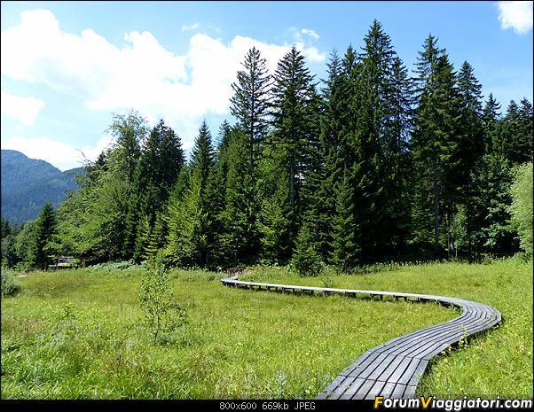 Slovenia, polmone verde d'Europa-p1830487.jpg