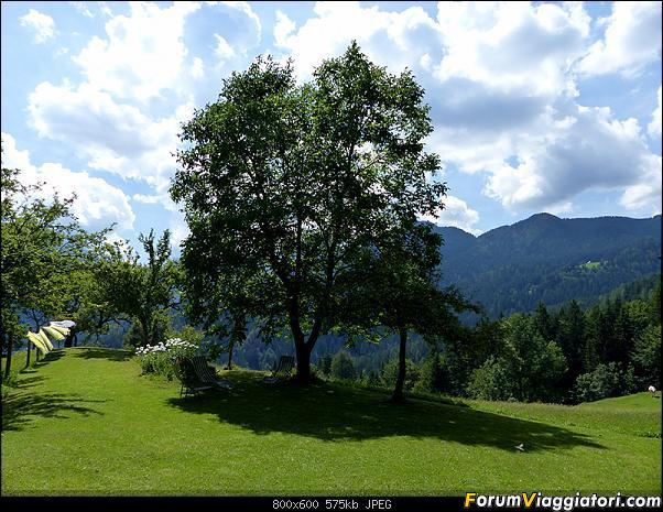 Slovenia, polmone verde d'Europa-p1830556.jpg