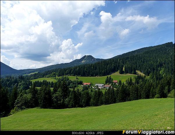 Slovenia, polmone verde d'Europa-p1830580.jpg