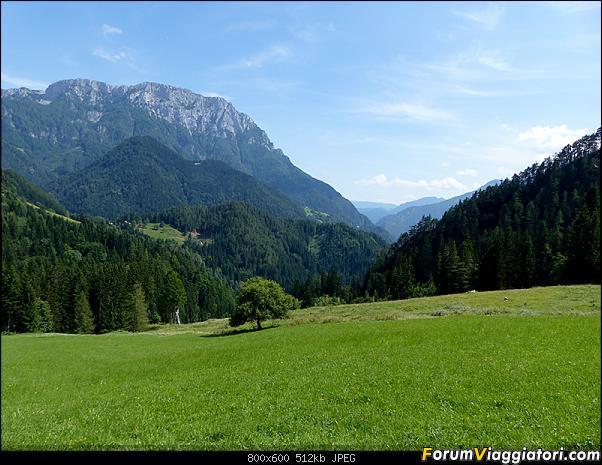 Slovenia, polmone verde d'Europa-p1830637.jpg