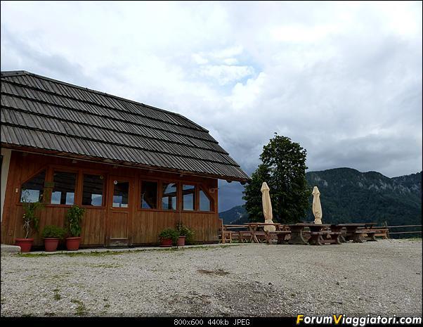 Slovenia, polmone verde d'Europa-p1830716.jpg
