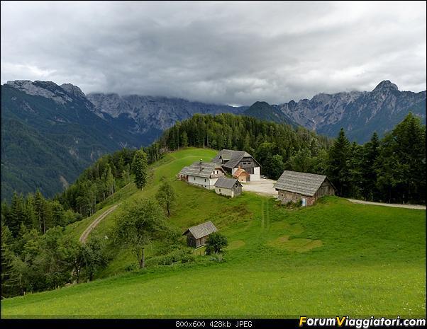 Slovenia, polmone verde d'Europa-p1830733.jpg