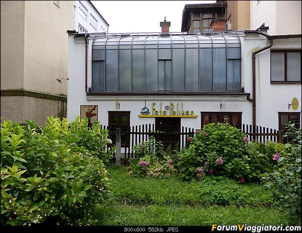 Slovenia, polmone verde d'Europa-p1830828.jpg