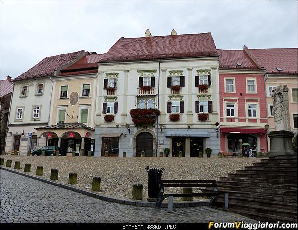 Slovenia, polmone verde d'Europa-p1840002.jpg