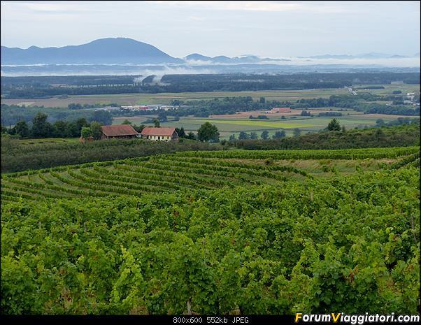 Slovenia, polmone verde d'Europa-p1840070.jpg