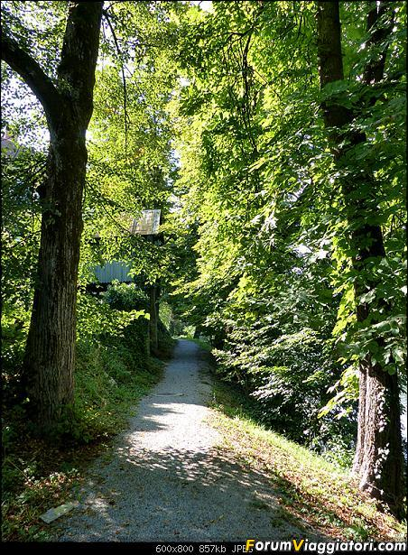 Slovenia, polmone verde d'Europa-p1840717.jpg