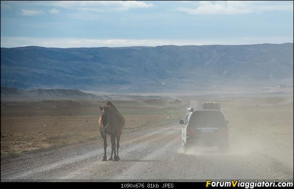 I colori del Kazakistan-dsc_6665.jpg