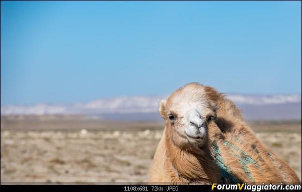 I colori del Kazakistan-dsc_6798.jpg