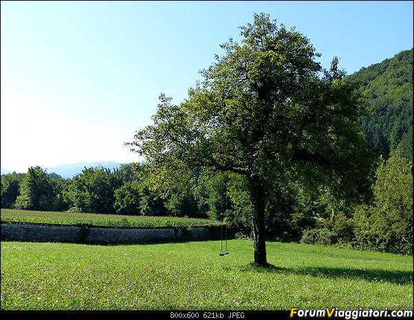 Slovenia, polmone verde d'Europa-p1840879.jpg