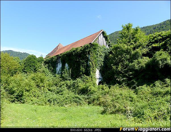 Slovenia, polmone verde d'Europa-p1840888.jpg