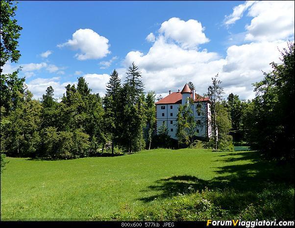 Slovenia, polmone verde d'Europa-p1850570.jpg