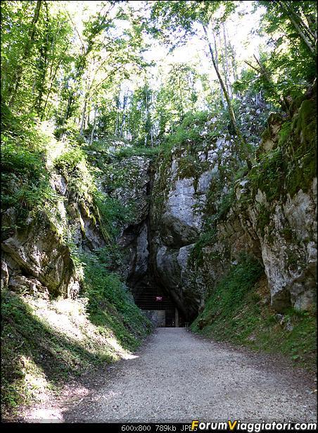 Slovenia, polmone verde d'Europa-p1850583.jpg