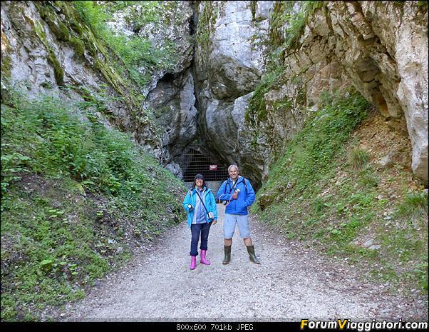 Slovenia, polmone verde d'Europa-p1850595.jpg