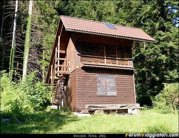 Slovenia, polmone verde d'Europa-p1850623.jpg