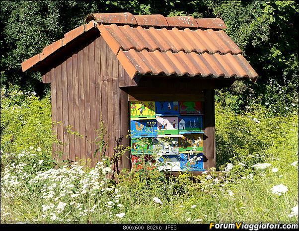 Slovenia, polmone verde d'Europa-p1850627.jpg