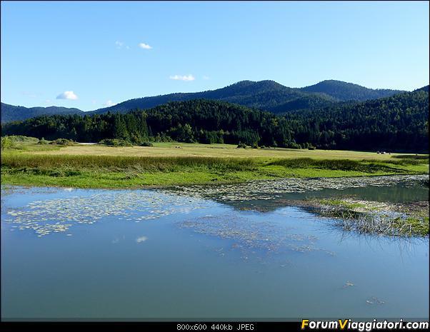 Slovenia, polmone verde d'Europa-p1850660.jpg