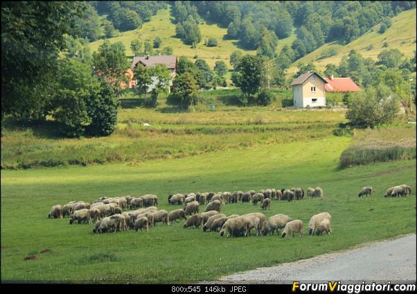Bosnia-Erzegovina 2018, un'altra piacevole scoperta-61img3659.jpg