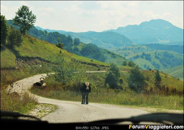 Bosnia-Erzegovina 2018, un'altra piacevole scoperta-65img3668.jpg