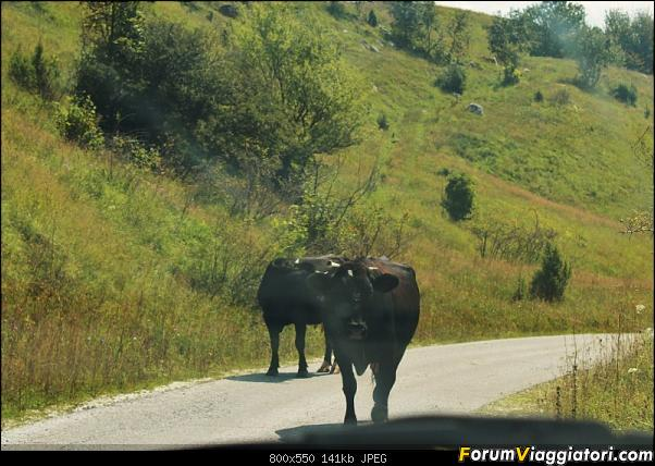Bosnia-Erzegovina 2018, un'altra piacevole scoperta-66img3669.jpg