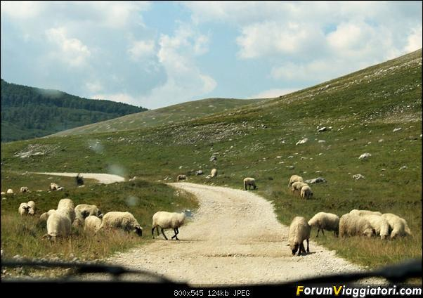 Bosnia-Erzegovina 2018, un'altra piacevole scoperta-14img3694.jpg