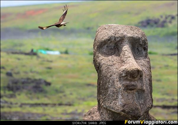 In Cile, dai moai ai ghiacciai (che fa pure rima...)-dsc_0316.jpg