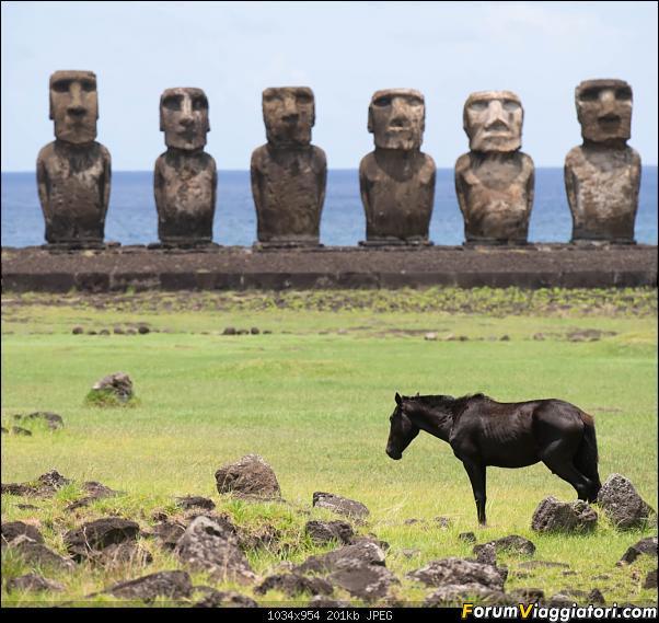 In Cile, dai moai ai ghiacciai (che fa pure rima...)-dsc_0317.jpg