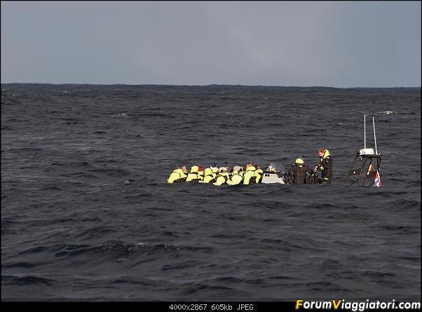 Isola di Senja in schooner-p2190413.jpg