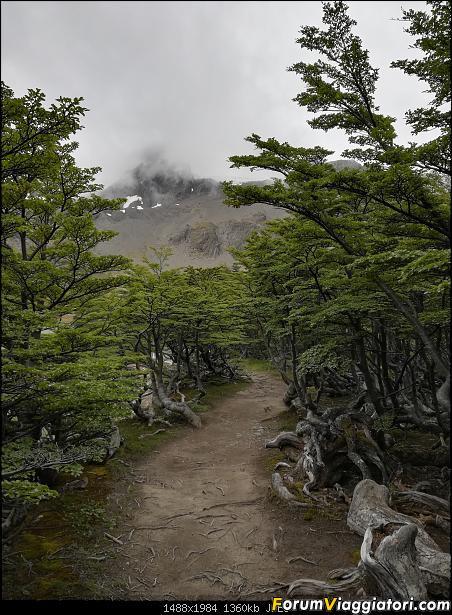 [ARGENTINA] Ushuaia, El Chalten, El Calafate, Bariloche.-img_20200215_122502.jpg