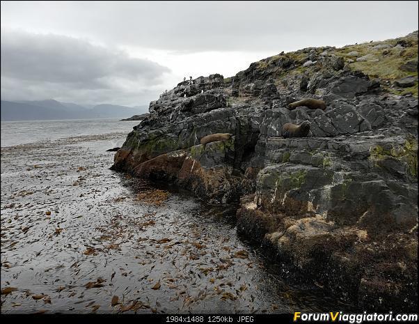 [ARGENTINA] Ushuaia, El Chalten, El Calafate, Bariloche.-img_20200215_155835.jpg