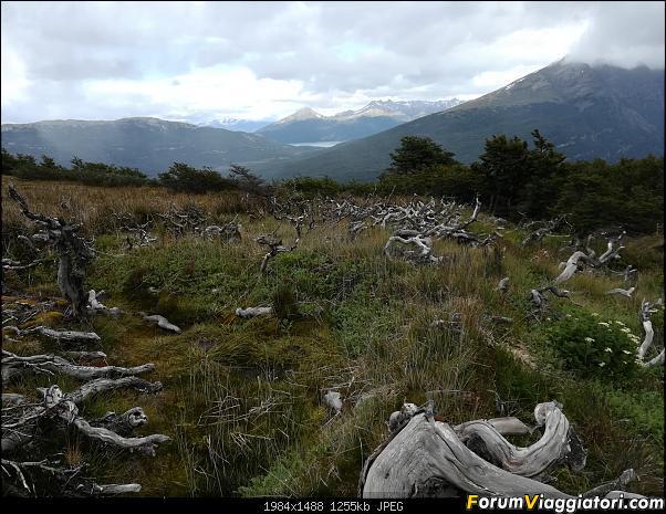 [ARGENTINA] Ushuaia, El Chalten, El Calafate, Bariloche.-img_20200216_113911.jpg