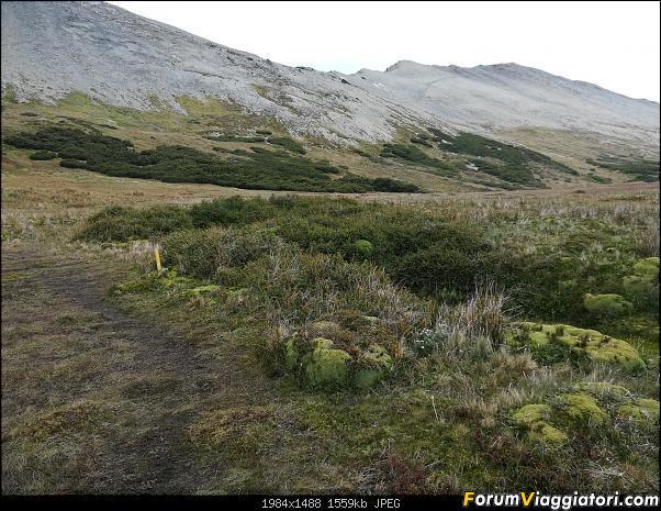 [ARGENTINA] Ushuaia, El Chalten, El Calafate, Bariloche.-img_20200216_114101.jpg