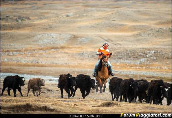 Nomadi e steppe, aquile e montagne: un viaggio in Mongolia-_dsc4681.jpg