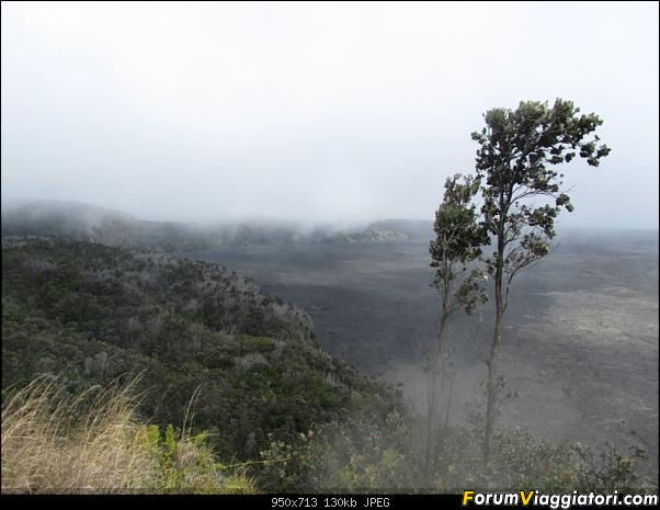 Hawaii Islands - Take your time!!! (agosto 2012)-img_2084.jpg
