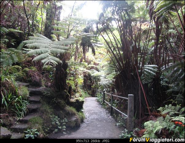 Hawaii Islands - Take your time!!! (agosto 2012)-img_2098.jpg