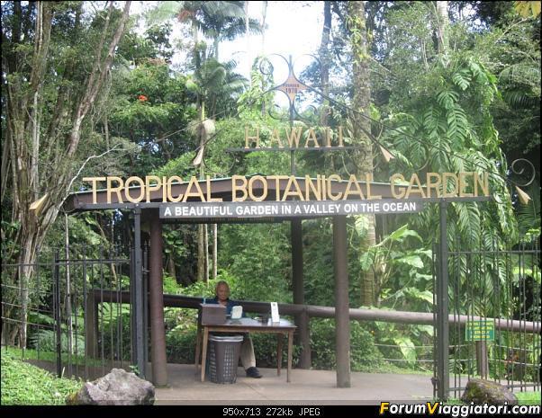 Hawaii Islands - Take your time!!! (agosto 2012)-img_2157.jpg