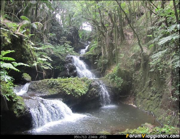Hawaii Islands - Take your time!!! (agosto 2012)-img_2175.jpg