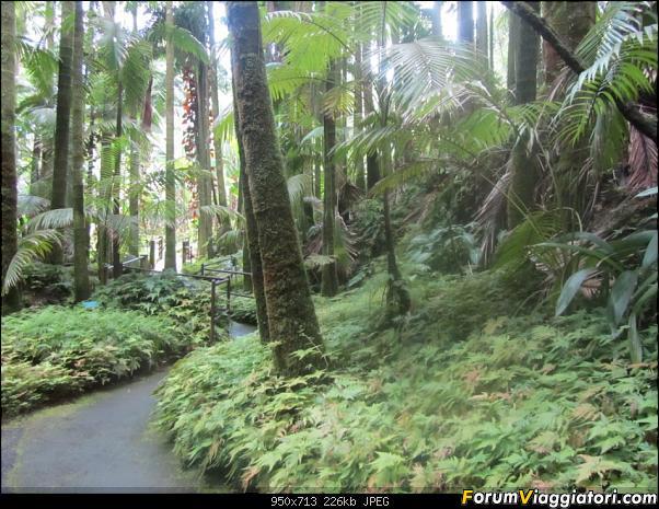 Hawaii Islands - Take your time!!! (agosto 2012)-img_2177.jpg