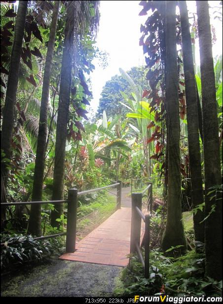Hawaii Islands - Take your time!!! (agosto 2012)-img_2179.jpg